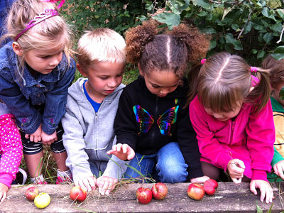 Kalamazoo Ready 4's - children examine apples | KzooConnect